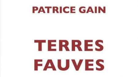 Patrice Gain Terres fauves
