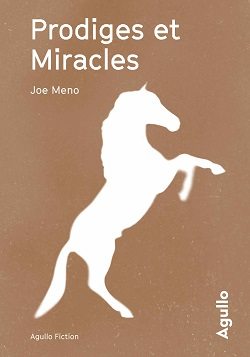 Joe Meno - Le Blues de La Harpie - Prodiges et miracles - La Crete des damnés